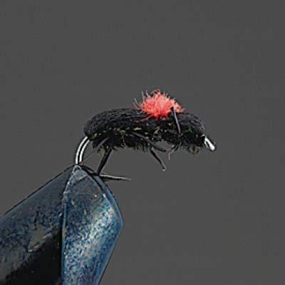 Valleyhill Complete Dry Fry COMPLETE FLY D 21 Form Beetle