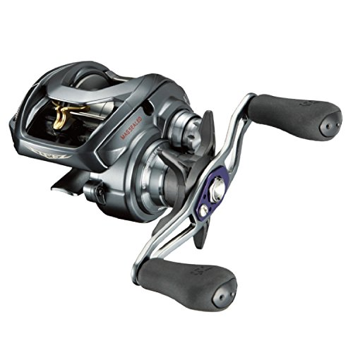 Daiwa Steez A ​​TW 1016 XHL (Casting left handle)
