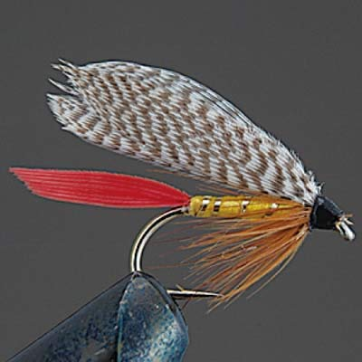 Valleyhill finished product wet fly COMPLETE FLY W5 professor