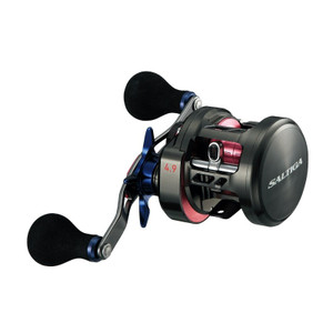 Daiwa Saltiga BJ 100P-RM (Right handle) Baitcasting Reel