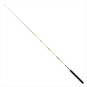 Pro marine PG fishing hole rod 100