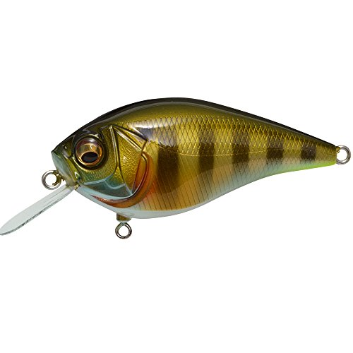 Megabass THE KNUCKLE (Knuckle) LD PM Wild Gill